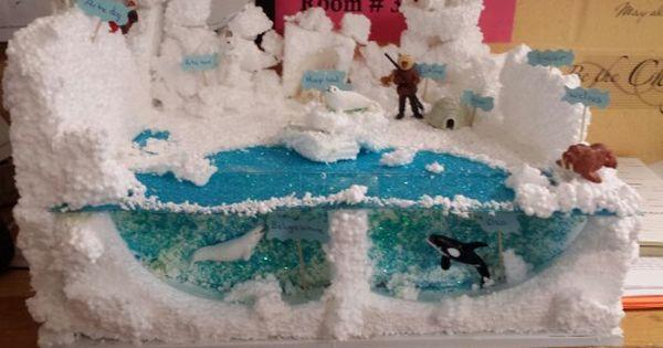 Diorama  habitat   diorama   Pinterest   Dioramas