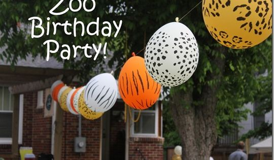 Zoo Birthday Party Ideas  birthday party ideas for 8 year old girl ...