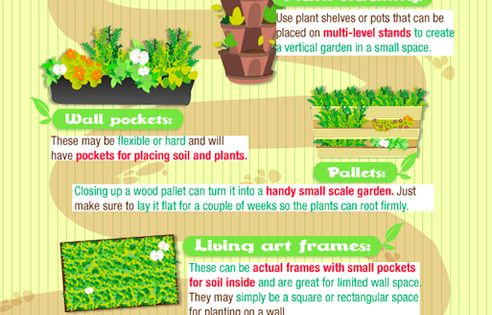 Getting Started with Vertical Gardening! Whatever you want to call them, vertical
