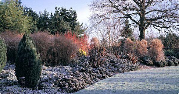 Great Rosarians Blog Gardens Of The World Beautiful Gardens Dream Garden