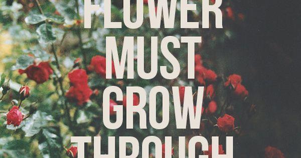 So true. Every Flower