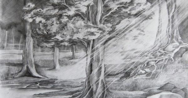 forest pond drawing - Google Search | Landscape Pencil Drawings ...