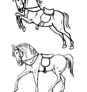 Ausmalbild Pferde Mit Sattel Zum Ausmalen Ausmalbilder Ausmalbilderpferde Malvorlagen Ausmal Ausmalbilder Pferde Ausmalbilder Tiere Indianer Pferde