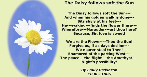 "an examination of the poem 465 by emily dickinson A summary of ""the brain—is wider than the sky—"" in emily dickinson's dickinson's poetry  this poem employs all of dickinson's familiar formal."