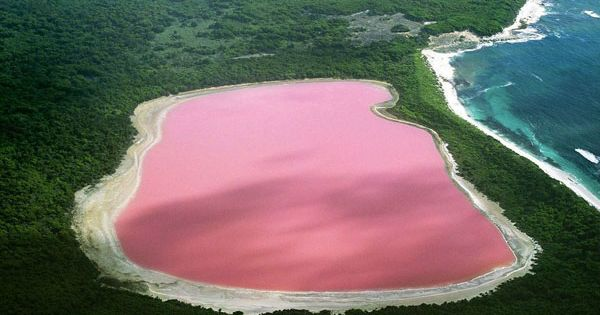 Lake Hillier // Western Australia // down under // pink lake //