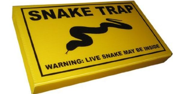 Snake trap by snake trap 24 95 works 24 7 set it and catch snakes