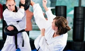 Martial Arts At Larry Shealy S Total Defense Fitness Academy Up To 86 Off Four Options Available Taekwondo Self Defense Classes Martial Arts