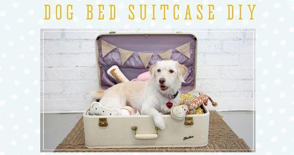 Dog Bed Suitcase DIY Home Sweet Home Pinterest World Crafts Do