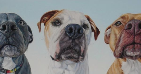 Wet Noses The Stunning Dog Portraits Of Artist James Ruby Dog Portraits Canine Art Puppy Art