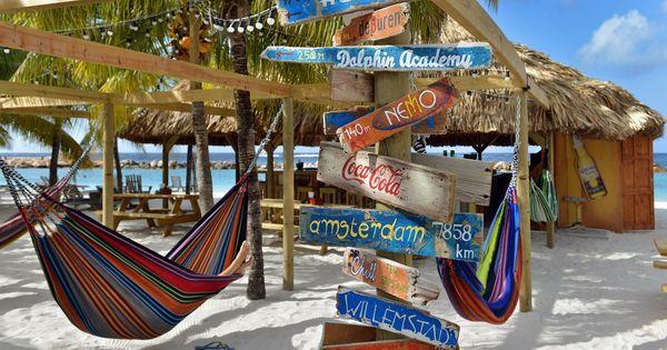 #hammock #chill #beachbar #lionsdive | Restaurants & Bars ...