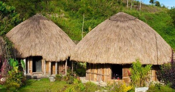 Gambar Rumah Adat Papua Rumah Honoi Gaya Rumah Rumah Desain Rumah