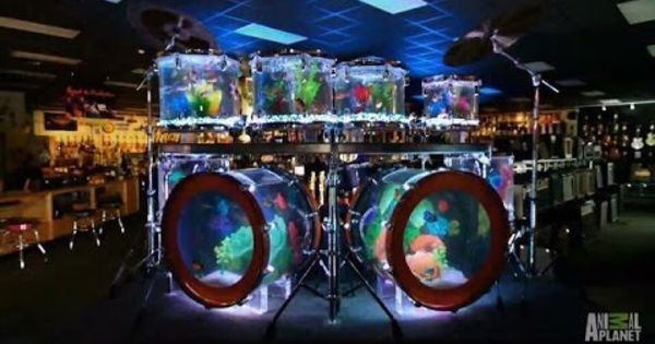 The Drum Set Tank Built By Atm For Blues Angel Music 39 S