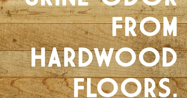 how to clean dog pee from hardwood