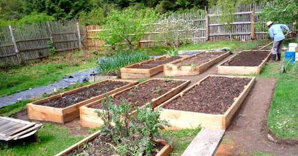 How to build a raised garden bed on sloping uneven ground building a raised garden bed over for How to build raised garden beds