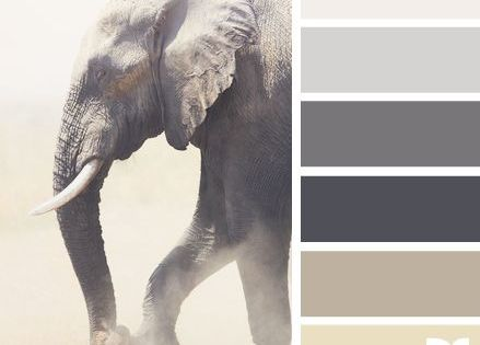 Image Result For Kitchen Colors For