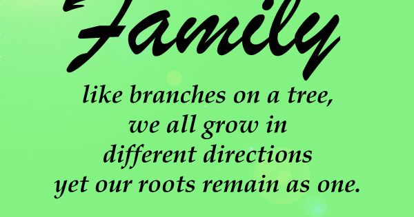 Like Branches On A Tree Quote: #quotes More On Purehappylife.com