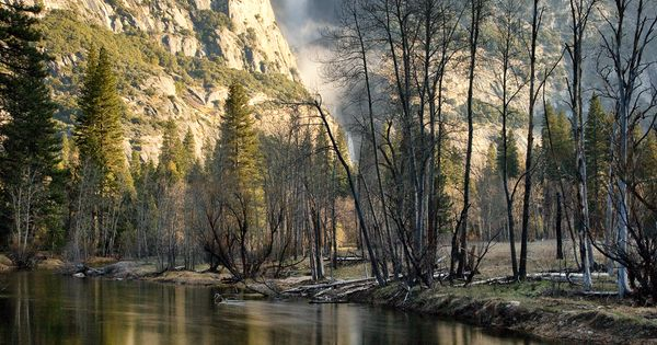 """Valley Morning"" - Yosemite Travel Photography"