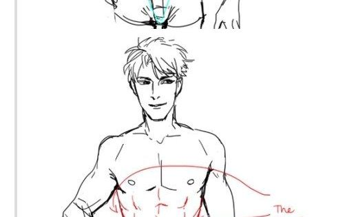 How To Draw Abs. Http://kelpls.tumblr.com/post/72186004376