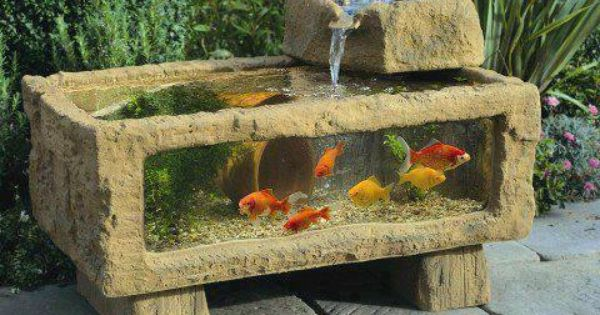 Rustic aquarium with waterfall love this for the home for Outdoor aquarium uk