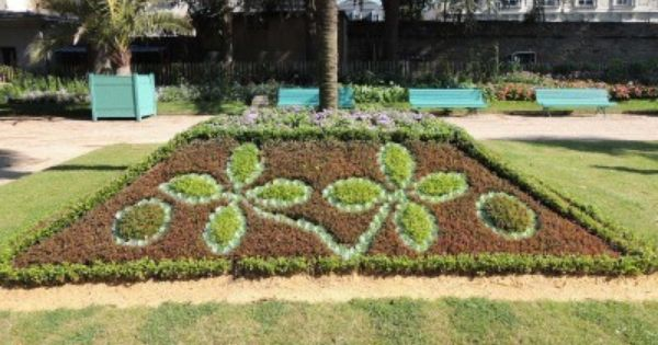 Writing With Bedding Plants Tips On Forming Pictures Or Words