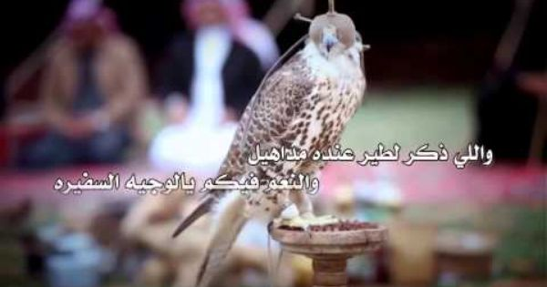 شيلة فخر مطير كلمات محمد الظويفري اداء عبدالوهاب الرحيمي Places To Visit Visiting Animals