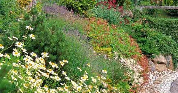 Couvre sol vivaces et plantes alpines pour jardin en for Jardin en pente