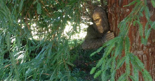 Bigfoot Sighting At The Riverside Rv Resort In Brookings Harbor Oregon Http Www Riverside Rv