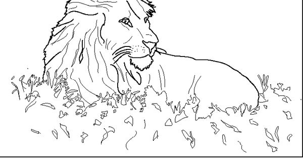 animal coloring pages farm animal coloring pagesk realistic animal coloring pages free animal. Black Bedroom Furniture Sets. Home Design Ideas