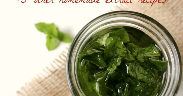 tired of paying high grocery store prices here 39 s how to make homemade mint extract with 5 other. Black Bedroom Furniture Sets. Home Design Ideas