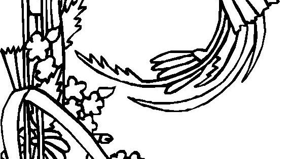 letter coloring pages coloring page alphabet flowers n dibujos 1359
