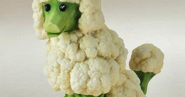 Cauliflower poodle. There are lots of cool food art pics on this