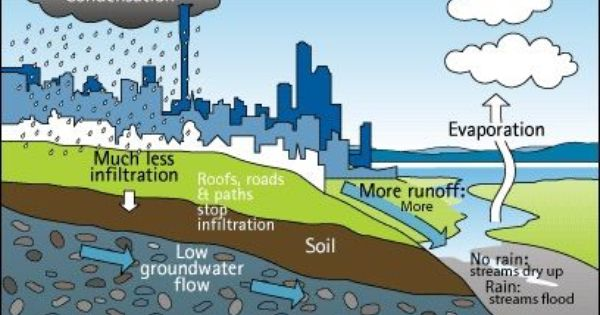 Using Groundwater Wisely Water Cycle Groundwater Groundwater Activities