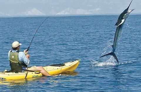 300 pound marlin tows kayak 11 miles these guys are for Best fishing kayak under 600