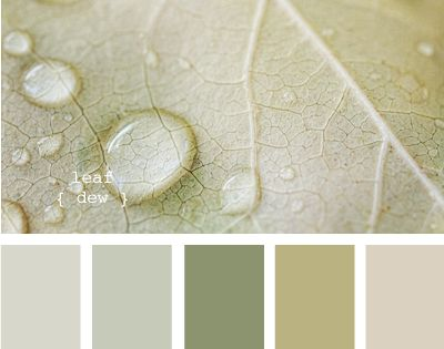 Bathroom color scheme - from a great website that helps you figure