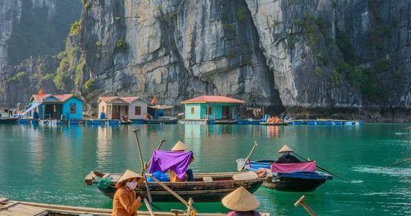 Halong Bay, Vietnam. Halongbay vietnam travel explore wanderlust asia