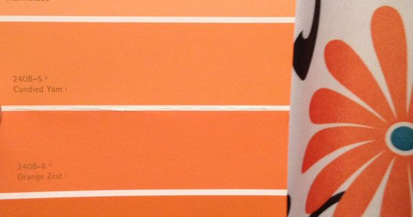 Behr Orange Color Pallet Leaning Toward Carrot Stick