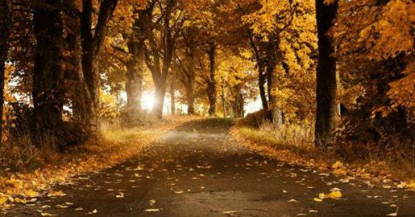 Entradas De February 2015 En Dedicado A Las Madres Autumn Landscape Beautiful Roads Landscape