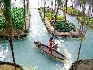 Chinampas Aztèques Aquaponie Plantas Agricultura