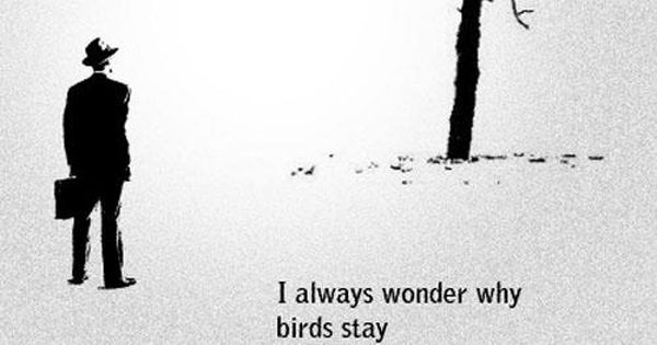 """I always wonder why the birds stay in the same place when"