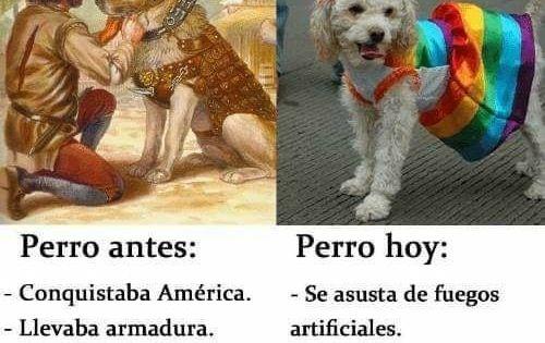 Los Perros De Antes Vs Los De Ahora Perros Animales Perros Perro Gato