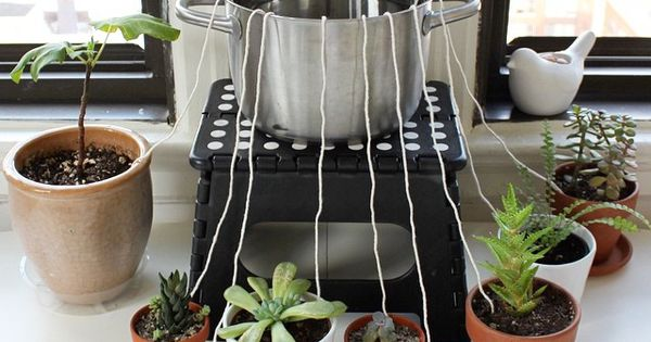 don 39 t let your houseplants suffer while you 39 re away from home rig up this diy self watering. Black Bedroom Furniture Sets. Home Design Ideas