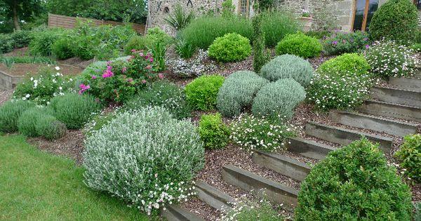 Massif plantes aromatiques escalier bois a corseul for Plantes aromatiques