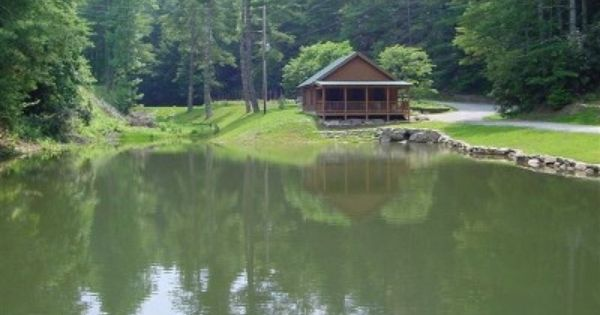 Private Home On Former Summer Camp W Trout Pond Fields More Brevard Ponds Backyard Backyard Building A Pond