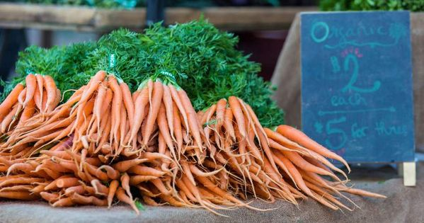 Planting Carrots In Central Oregon Can Be Rewarding Carrots Seed Germination Nutritious Drink