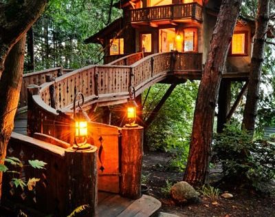 Dream House! Treehouse Cabin