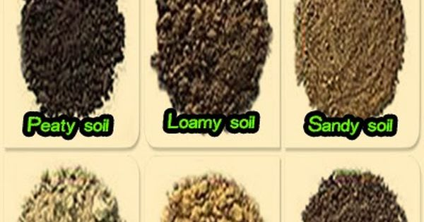Six soil types beautiful home and garden gardening for Garden soil types
