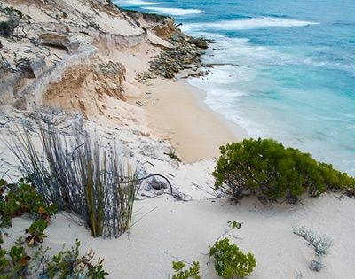 West Point Memory Cove wilderness area, Lincoln National Park. Eyre Peninsula South