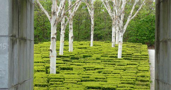 LOVE birch modern garden design garden interior design| http://modern-garden-design-57.blogspot.com