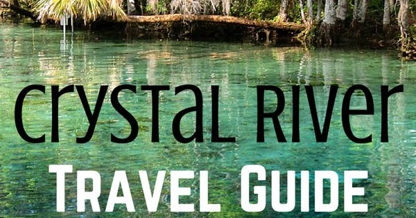 Travel Guide 5 Awesome Things To Do In Crystal River