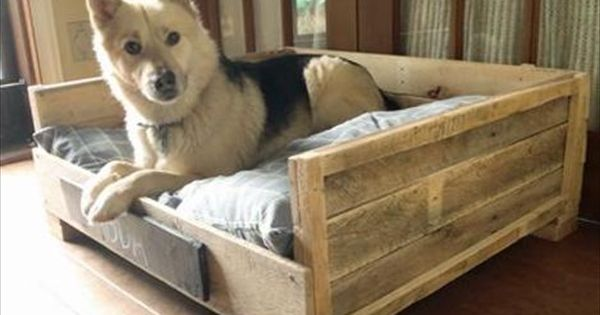 20 Cool Pet Bed Ideas Wooden Pallet Furniture Diy Dog